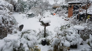 A wintry back garden scene in Northampton.