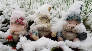 Snow place like gnome: wintry conditions in Great Chesterford in Essex.