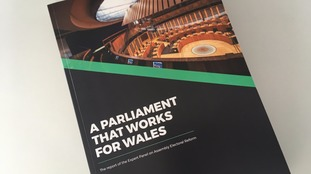 Report calls for up to 90 Assembly Members