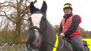 Sarah Hills is a horseback volunteer