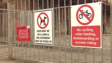 Too many signs? Devon town accused of being bossy