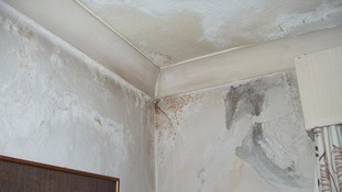 Damp in rented accommodation
