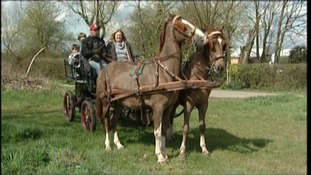 The family from Kelvedon have swapped their Land Rover for a horse and cart to help them save money