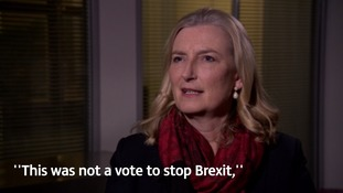 Brexit bill: why Devon MP Sarah Wollaston joined the Tory rebellion