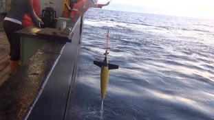 UEA scientists using robots to detect whales in deep ocean