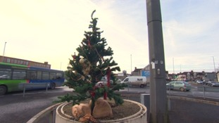 Tiny Christmas tree appears on Swindon's Magic Roundabout
