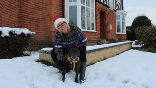 Jo with foster dog Bisto