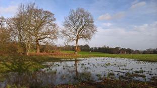 A flooded field at Martlesham in Suffolk.