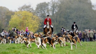 Fox hunting: Theresa May abandons manifesto pledge on vote to overturn ban