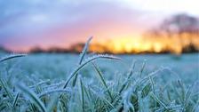 Sunday morning frost JESS CLARK