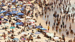 Sydney hits 47C as it sweats through hottest day since 1939