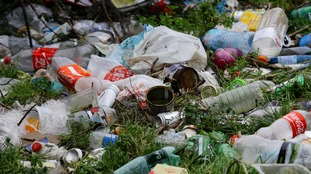 Grass verges covered in litter