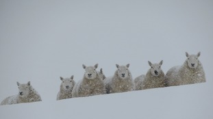 Highest UK snowfall recorded in Dumfries and Galloway