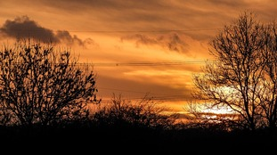 Anglia Weather: Rain overnight and becoming very windy towards dawn