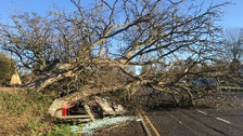 Widespread disruption caused as high winds hit the region