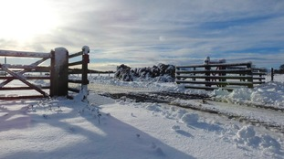 North York Moors on Thursday 18th January PATRICIA MORRIS