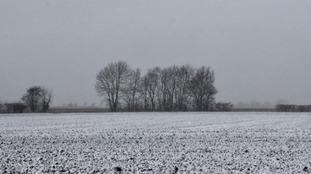 A snow covering near the village of Castle Camps on the Cambridgeshire-Essex-Suffolk border.