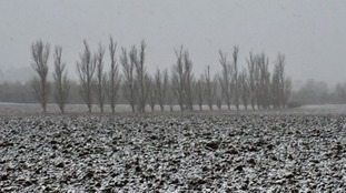 A snow covered field at Castle Camps in Cambridgeshire on Sunday.