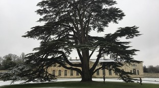 A snowy scene at Woburn Abbey in Bedfordshire.