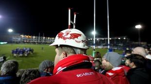 Scarlets fan