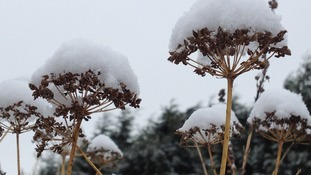 Snow covers parts of the region