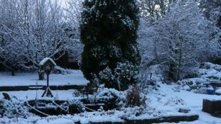 Snow in Kingsgate