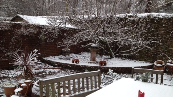 A picture sent in of a snow covered garden in Surrey