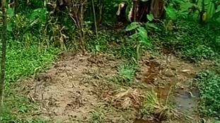 'Five mass graves found' in Myanmar