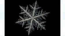 A snowflake under a microscope