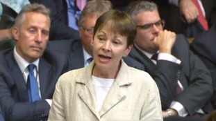 Caroline Lucas called for any MPs who refused the training to be sanctioned