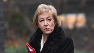 Andrea Leadsom was a high-profile Leave campaigner during the referendum