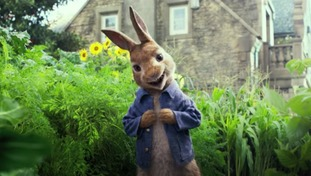 Peter Rabbit film makers apologise after allergy scene backlash