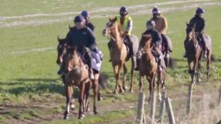 Horse racing industry recognises work behind scenes