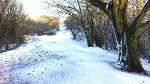 A wintry scene through the trees in Worcestershire.
