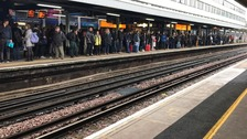 Hundreds stranded as electrical fault blocks rail lines at Winchester