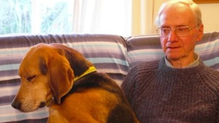 Peter Wrighton was killed while walking his two dogs