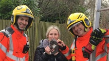 Bella and her owner reunited after they both got stuck up a tree