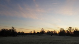 Anglia Weather: Cold and frosty overnight