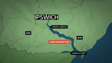 Three sheep killed and butchered in field near Ipswich