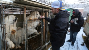 US freestyle skier Gus Kenworthy visited a dog meat farm in South Korea.
