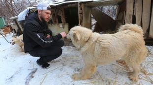 The dogs were kept in 'cruel' conditions, Kenworthy said.