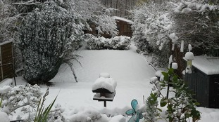 Indi Gaddu lives in Birmingham and sent us this picture of the snow this morning.