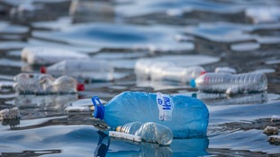 Plastics pollution is a serious issue.