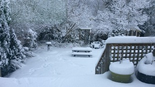 Up to 30 cm (1 ft) of snow was reported in this back garden in Norwich.