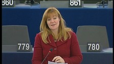 Kay Swinburne MEP
