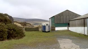 stablesandkennel