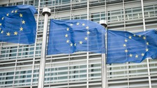 EU Commission flags