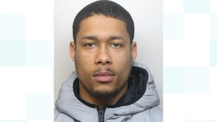 Lewis Brown (pictured) attacked a woman and a police officer. He's been sentenced to 7 and a half years.