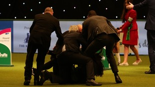 Security review underway after Crufts pitch invasion