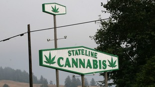 Cannabis Sign